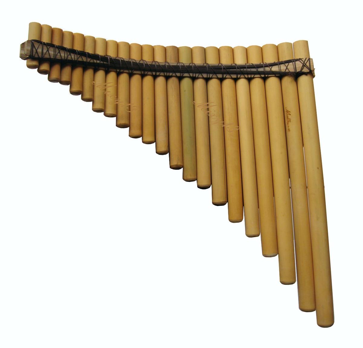outros instrumentos música