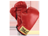 combate y artes marciales