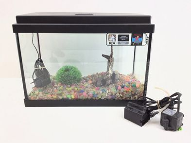 acuario otros