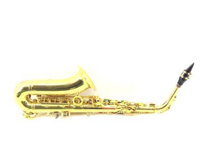 saxofone outro series 1000 iii