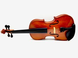 violin carmino v501